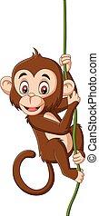 macaco, filial árvore, penduradas, bebê, caricatura
