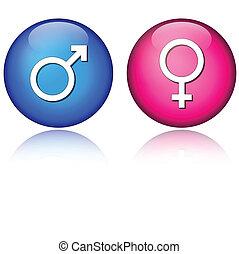 macho, femininas, ícones
