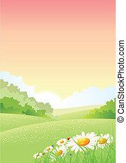 manhã, primavera, cartaz, verão, ou, estações