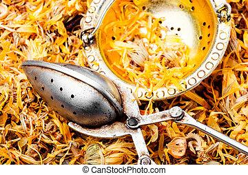 marigold, secos, ervas medicinais