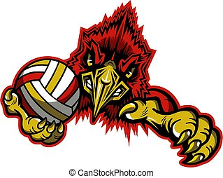 mascote, cardeal, voleibol