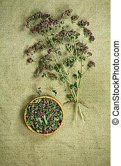 medicina, herbs., dried., oregano., herbário, medicinal, phytotherapy