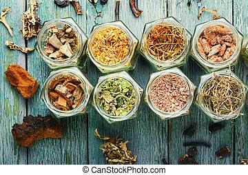 medicina, medicinal, herbário, ervas