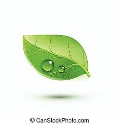 meio ambiente, conceito, verde, ícone