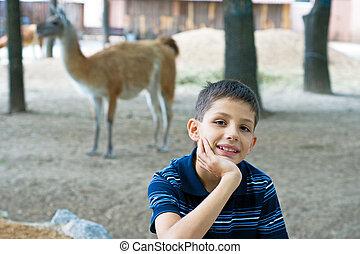 menino, jardim zoológico