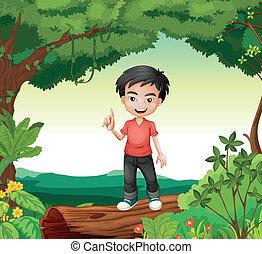 menino, natureza