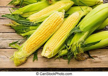 milho doce, orelhas, amarela, fresco