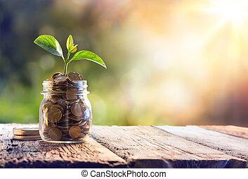 moedas, planta, poupança, crescendo