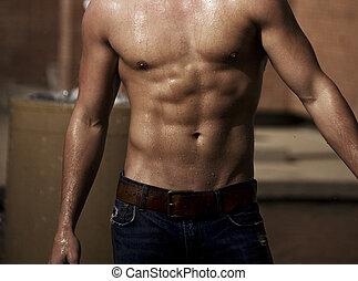 molhados, músculos