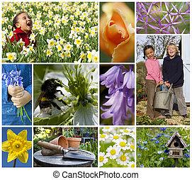 montagem, tocando, flores, crianças, primavera, jardim