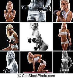 montagem, treinamento peso