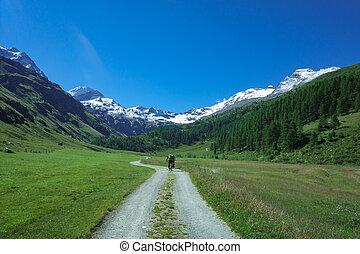 montanha, alto, bicicleta estrada, montanhas, sujeira