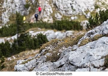 montanhas, escalando