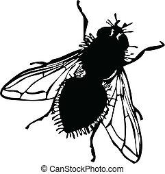 mosca, silhuetas, vetorial