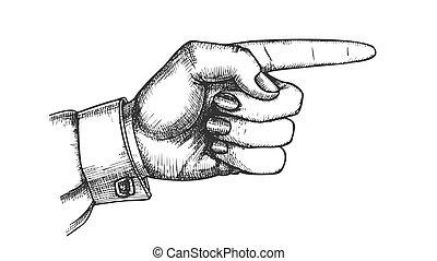 mostrando, mão, vetorial, dedo, femininas, ponteiro, gesto