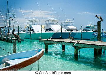 mujeres, méxico, ilha, cancun, jetty., isla