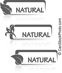 natural, ícones, folha, natureza, símbolos, vetorial, retângulo