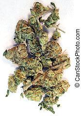 natural, marijuana, flores, cannibis, verde, quebrada, brotos, planta