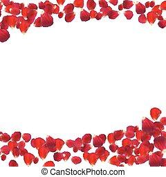 naturalista, rosa, petals., ilustração, vetorial, fundo