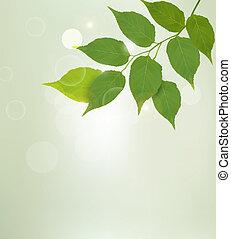 natureza, leaves., vetorial, experiência verde, illustrtion.