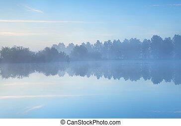 nebuloso, tranqüilo, lago, manhã