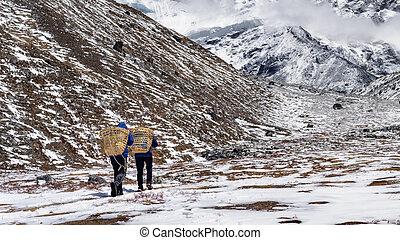 nepal., acampamento, ilha, zeladores, monte, 6, m, tse, base, imja, carregar, provisões, pico