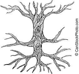 nu, tronco, árvore, raizes, ornate