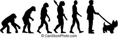 oeste, evolução, altiplano, terrier