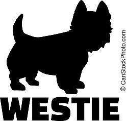oeste, raça, terrier, nome, altiplano