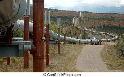 oleoduto, óleo