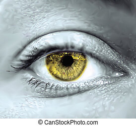 olho, vetorial, macro., amarela, femininas