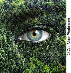 olhos, conceito, natureza, -, floresta verde, human, salvar
