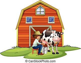 ordenhar, vaca, agricultor