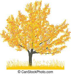 outono, árvore cereja
