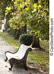 outono, banco, ruela, parque, vazio, folhas, maple, strewn, outono, experiência.
