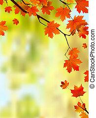 outono, borda, folhas, text., seu