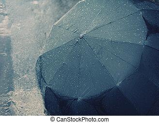 outono, chuvoso, guarda-chuva, dia, molhados