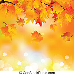 outono, filial árvore