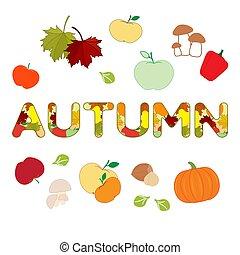 outono, fruits., ilustração, legumes