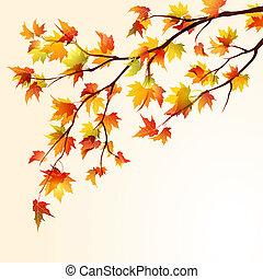 outono, maple, ramo