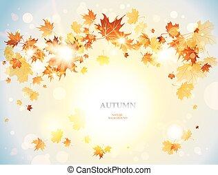 outono, positivo, folhas, fundo