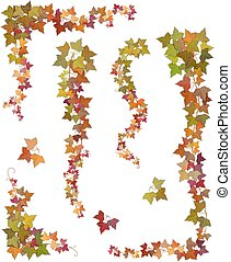 outono, ramos, hera, penduradas