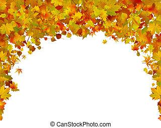 outono sai, 20110124-2(3).jpg, fundo