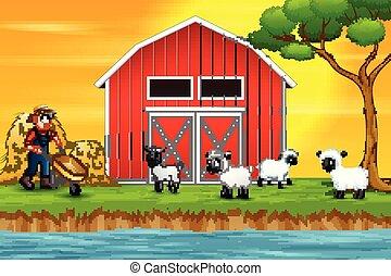 ovelhas cultivam, feliz, caricatura, agricultor