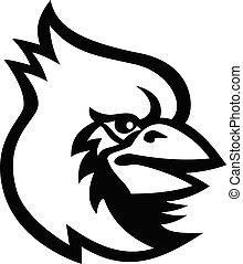 pássaro branco, mascote, pretas, cardeal, cabeça