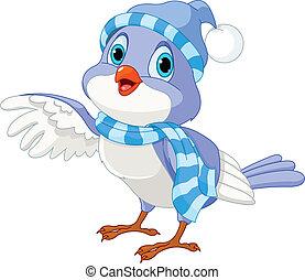pássaro, cute, inverno