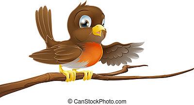 pássaro, robin, apontar, ramo