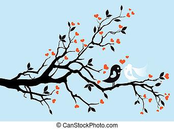 pássaros, vetorial, casório