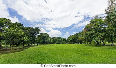 público, céu azul, árvores, parque, gramado verde