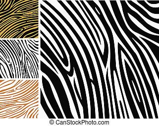 padrão experiência, -, zebra, impressão pele animal